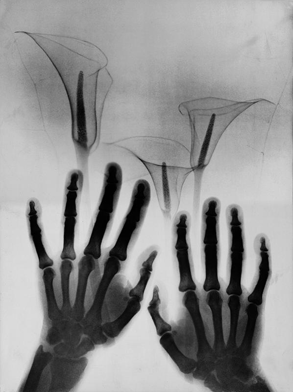 Balla Demeter: Virágok anyámnak (1982)
